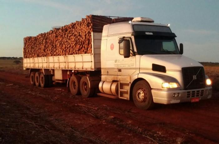 Transporte Florestal